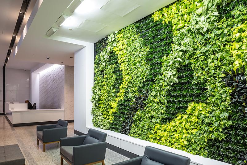 Green Walls Planterra